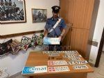 CRONACA - Nella lavatrice il «kit» per truffare gli anziani: targhe e loghi contraffatti di Smat e Regione - immagine 3