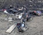 RIVOLI-GRUGLIASCO - Idioti in azione: bruciato il «villaggio felino» e alcuni alberi - immagine 3
