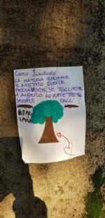 VENARIA - Cartelli e disegni per dire «no» allabbattimento degli alberi in via Amati - immagine 3