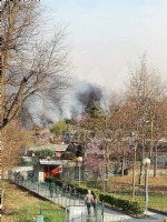 ALLARME INCENDI - «Grazie a vigili del fuoco, Aib, croce rossa e forze dellordine» - immagine 3