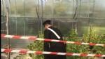 RIVOLI - Carabinieri chiudono il «vivaio della cannabis»: arrestati marito e moglie - FOTO E VIDEO - immagine 3