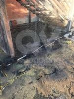 MAPPANO - A fuoco sei cassonetti dei rifiuti nel cortile della scuola - immagine 3
