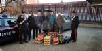CASELLE - Frutta e verdura sequestrati: i carabinieri donano tutto alla Caritas - FOTO - immagine 3
