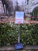 VENARIA - Proliferazione di topi in città: il Comune interviene con una derattizzazione urgente - immagine 3