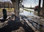 VENARIA - Problemi al canale irriguo della Dora: allagate via Don Sapino e corso Matteotti - immagine 3