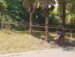 RIVOLI - Provocano un incendio e mettono il video sul web, denunciati 5 minorenni - immagine 3