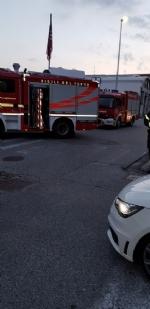 RIVOLI - Incastrato nel radiatore di una macchina: gatto salvato dai vigili del fuoco - immagine 3