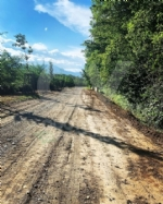 PARCO MANDRIA - Riaperto il Viale dei Roveri: era chiuso da oltre un mese, causa nubifragio - immagine 3