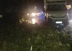 MALTEMPO - Furgone colpito da un albero in tangenziale: donna ferita. Forti danni in diverse cittadine - immagine 3