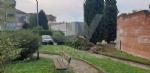 VENARIA-BORGARO-CASELLE-MAPPANO - Maltempo: tetti scoperchiati e alberi abbattuti - immagine 13