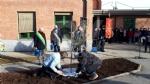 VENARIA - Alla scuola Lessona lUlivo di Gerusalemme per non dimenticare lOlocausto - FOTO - immagine 3