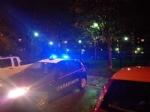 PIANEZZA - Blitz dei carabinieri al «giardino del fumo»: sei segnalati alla prefettura di Torino - immagine 3