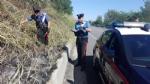 ALPIGNANO - «Mi dava fastidio lerba alta»: piromane appicca un incendio. Arrestato dai carabinieri - immagine 3