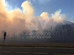 VAL DELLA TORRE - Incendio sui monti tra Brione e Val della Torre - immagine 7