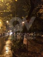 VENARIA - MALTEMPO: Parte la conta dei danni. Sopralluogo del sindaco in tutta la città - immagine 7
