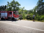 VENARIA - Grave incidente sulla Sp1: scontro tra due auto finite nella scarpata - FOTO e VIDEO - immagine 3
