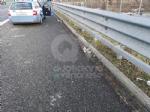 TORINO-BORGARO - Lancio di sassi dal campo nomadi in tangenziale: colpita una macchina - immagine 3