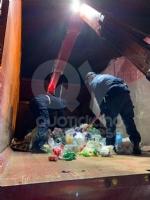 BORGARO - «Ci sono degli animali nei bidoni della plastica»: civich e carabinieri in via Santa Cristina - immagine 3