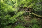 VENARIA - Il degrado di Corona Verde: tra atti vandalici, scarsa manutenzione e costruzioni mai finite - immagine 3