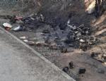 RIVOLI-GRUGLIASCO - Idioti in azione: bruciato il «villaggio felino» e alcuni alberi - immagine 4
