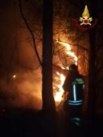 VAL DELLA TORRE - Incendio boschivo: riprese le operazioni, la preoccupazione non diminuisce - immagine 4