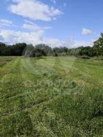 DRUENTO - Il Suv passa sui terreni agricoli di Strada Cortese e Strada Pasturanti, rovinandoli - immagine 4
