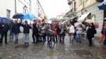 VENARIA - «Festa delle Rose»: un successo a metà per colpa della pioggia - immagine 4