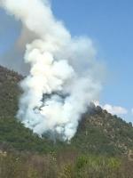 CASELETTE-VAL DELLA TORRE - Un vasto incendio distrugge i boschi del Musinè - FOTO - immagine 4