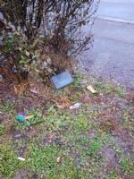 VENARIA - Proliferazione di topi in città: il Comune interviene con una derattizzazione urgente - immagine 4
