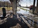 VENARIA - Problemi al canale irriguo della Dora: allagate via Don Sapino e corso Matteotti - immagine 4