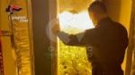 VENARIA - Due donne denunciate per possesso di droga: in manette il loro fornitore - immagine 4