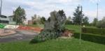 VENARIA-BORGARO-CASELLE-MAPPANO - Maltempo: tetti scoperchiati e alberi abbattuti - immagine 14