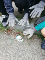 GIVOLETTO - Agenda 2030: guanti, pinze e sacchi per i giovani studenti per un ambiente pulito - immagine 4