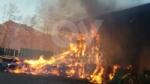 COLLEGNO - Inferno alla «Cascina Serpera»: a fuoco il fienile dellazienda agricola Bosco - immagine 4