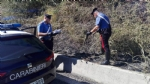 ALPIGNANO - «Mi dava fastidio lerba alta»: piromane appicca un incendio. Arrestato dai carabinieri - immagine 4