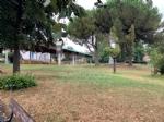RIVOLI - Nuovo look per le aree verdi comunali: pulizia e taglio dellerba - immagine 4