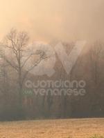 VAL DELLA TORRE - Incendio sui monti tra Brione e Val della Torre - immagine 8