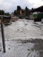 MALTEMPO - Grandine pioggia e vento nella nostra zona. Chicchi da 3 centimetri di diametro - FOTO - immagine 4