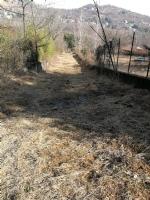 VALLI - Tempesta di Foehn in arrivo: raffiche tra 100 e 180 km/h. Pericolo incendi boschivi - immagine 4