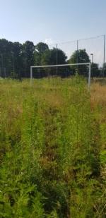 VENARIA - Muri pericolanti ed erba alta: degrado nel campo «naturale» del Don Mosso - immagine 4