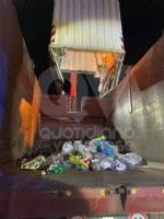 BORGARO - «Ci sono degli animali nei bidoni della plastica»: civich e carabinieri in via Santa Cristina - immagine 4