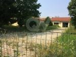 VENARIA - Moderati, Pd e Forza Italia: «Lerba è altissima. La città è una giungla» - immagine 5