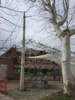 CASELLE - Il forte vento distrugge la tenda della tensostruttura del PratoFiera - immagine 5
