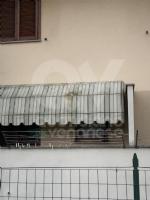 MAPPANO - Idioti nuovamente in azione: lanciate uova contro numerose case - immagine 5