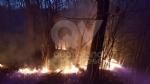 DRUENTO - Incendio boschivo in strada Rive: roghi spenti da pompieri, Aib e Protezione Civile - immagine 5