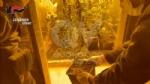VENARIA - Due donne denunciate per possesso di droga: in manette il loro fornitore - immagine 5