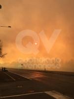 VAL DELLA TORRE - Incendio sui monti tra Brione e Val della Torre - immagine 9