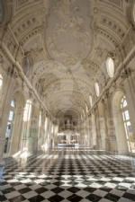 VENARIA - Nella Galleria Grande della Reggia approda la «Giostra di Nina» - FOTO - immagine 5