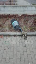 BORGARO - Idioti in azione: divelti i cestini, in frantumi una fermata del bus - immagine 5