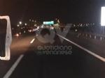 VENARIA-SAVONERA - Ubriaco al volante provoca incidente: sei persone ferite, tra cui due bambini - immagine 5